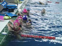 scoala de înot